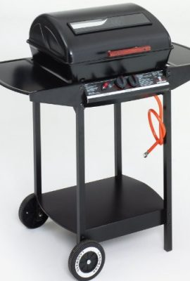 Landmann-12375-2-Burner-Gas-Barbecue-with-Lava-Rock-0